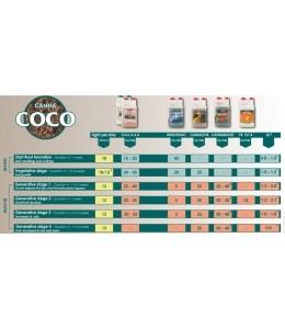 Canna Coco A+B 2x10L
