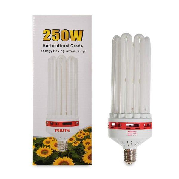 CFL 250W Grow
