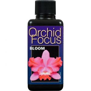 Orchid Focus Bloom 1L