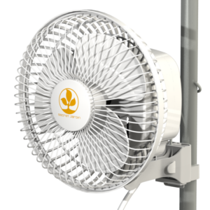 Secret Jardin – Monkey Fan 16W