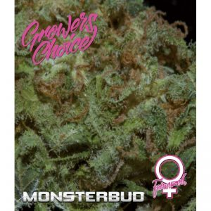 MonsterBud Feminized