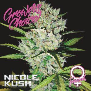 Nicole Kush Feminised