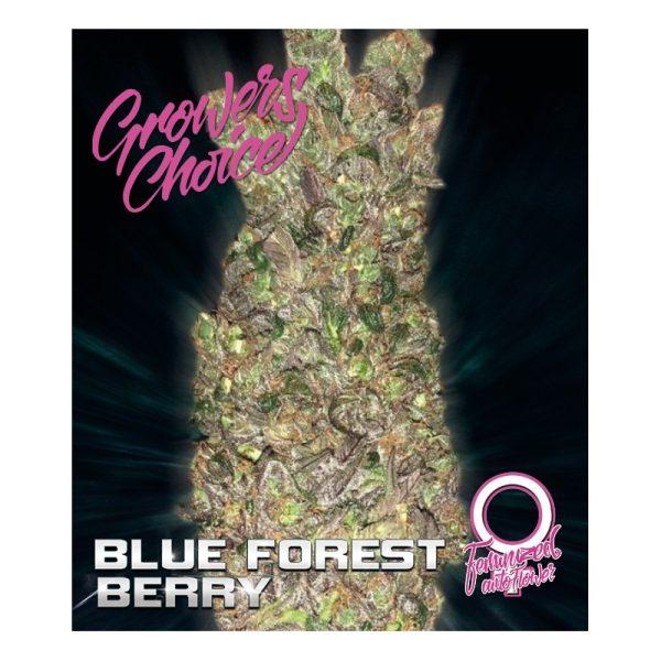 Blue Forest Berry AutoFlower
