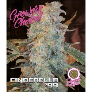 Cinderella 99 AutoFlower