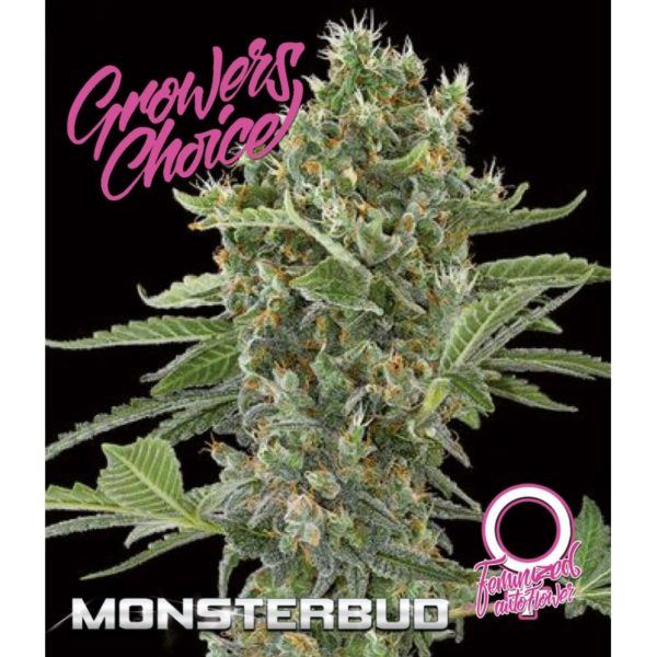 MonsterBud Autoflower