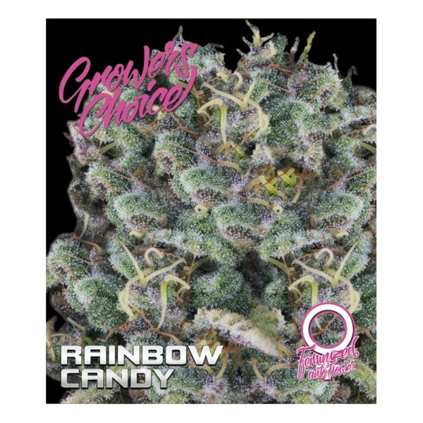 Rainbow Candy Autoflower