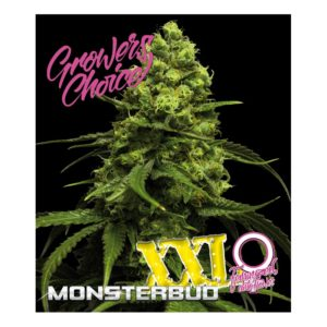 Superlarge XXL Monsterbud Autoflower