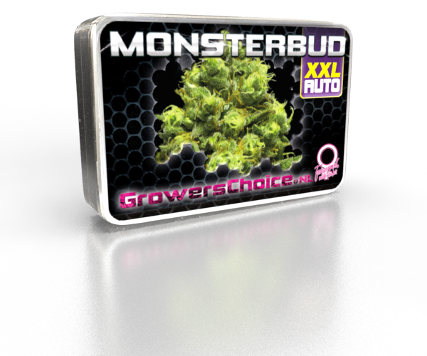 SuperLarge XXL Monsterbud Autoflower