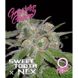 Sweet Tooth x NLX Feminized AutoFlower