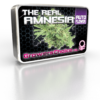 The Real Amnesia Autoflower