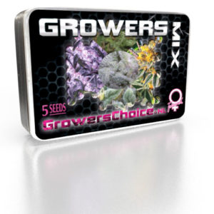 Growers Mix Feminized