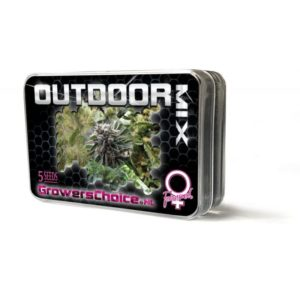 Outdoor Mix Feminized