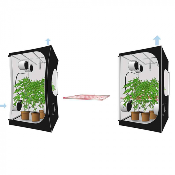 Secret Jardin Space Booster
