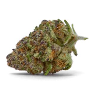 Purple Sunset Autoflower